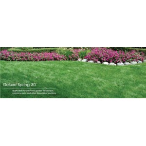 IVC Leisure Grass type Deluxe Spring 30